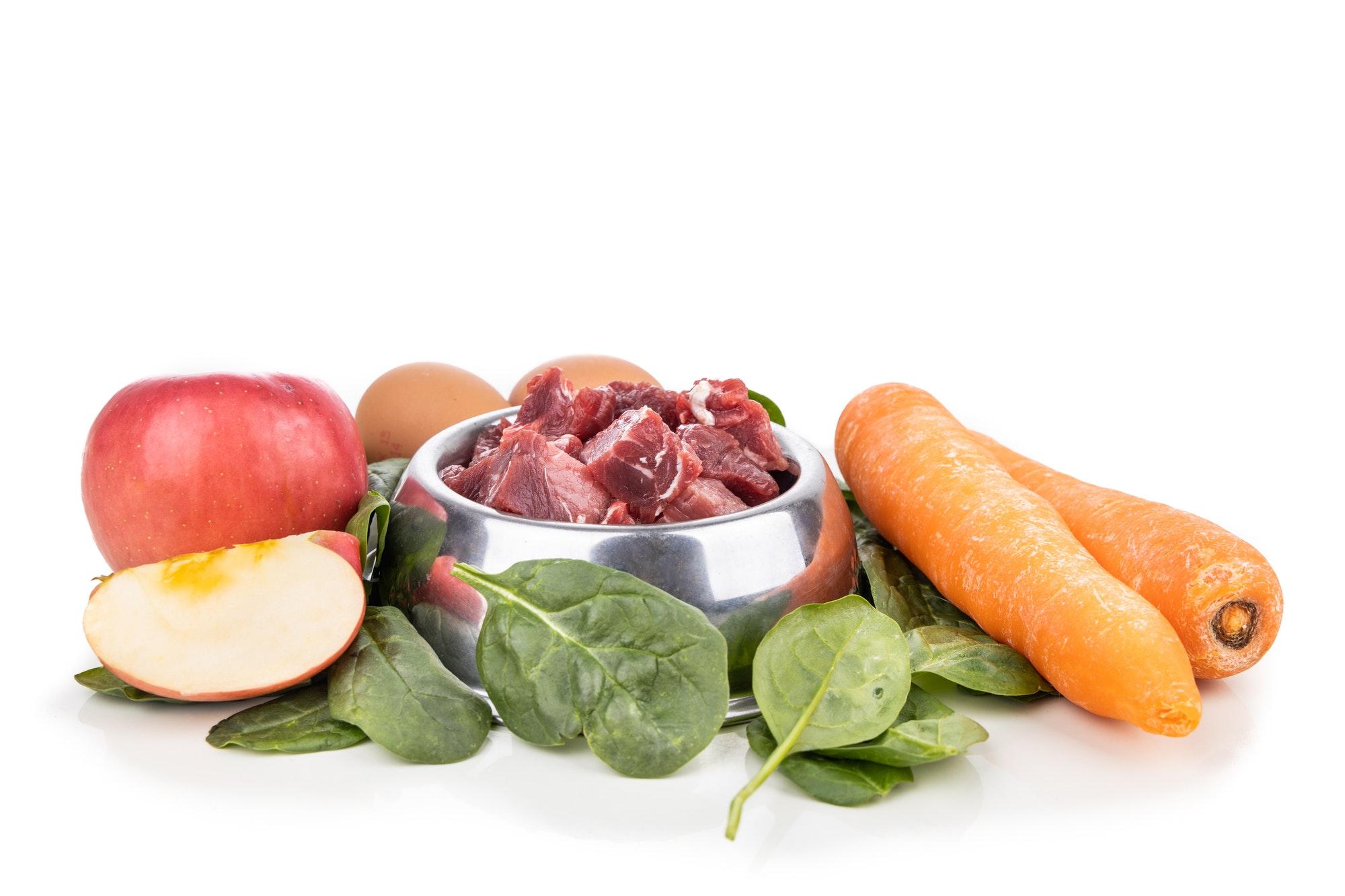 Najboljša hrana za pse je kvalitetna, naravna in zdrava